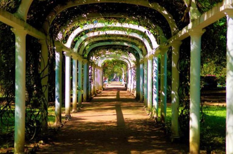 Jardim Botânico, Rio de Janeiro   © Basalt/WikiCommons