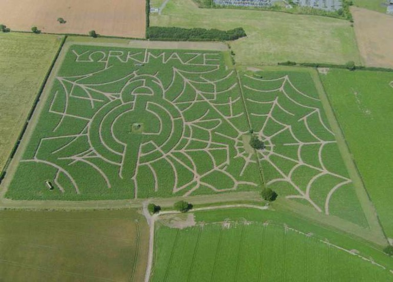 York Maze | © The photo uk/Flickr