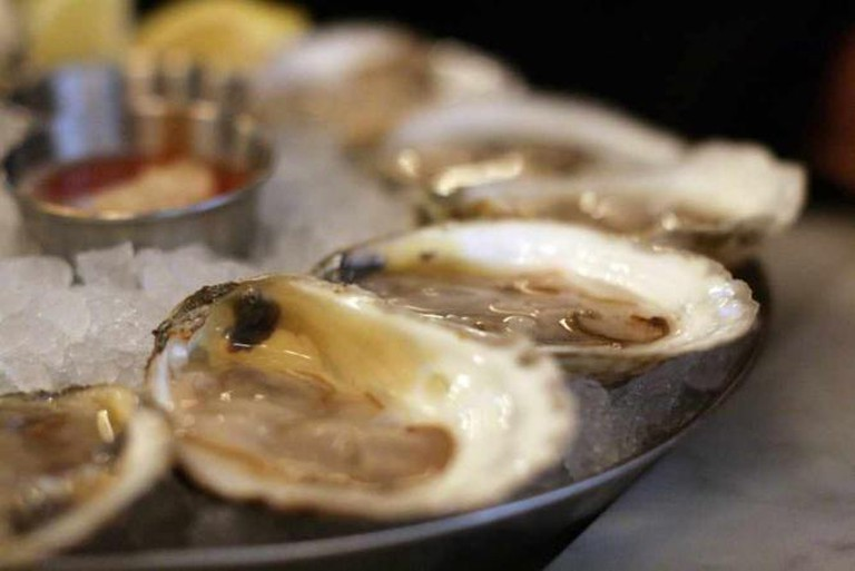 Oysters | ©Jules Morgan/Flickr
