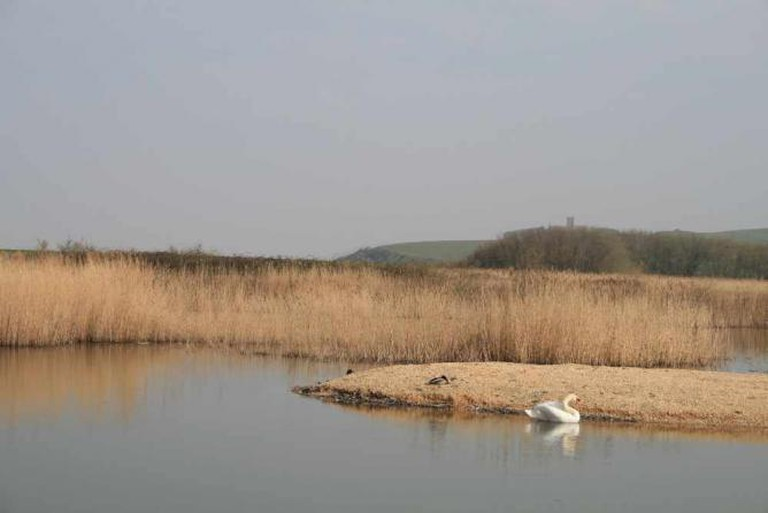 Bleadon Levels Nature Reserve | Courtesy of Wessex Water
