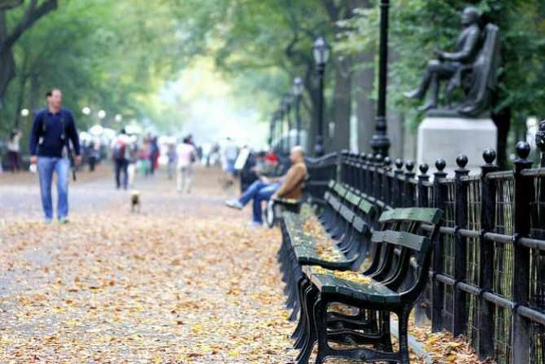 Central Park Benches | © Phil Roeder/Flickr