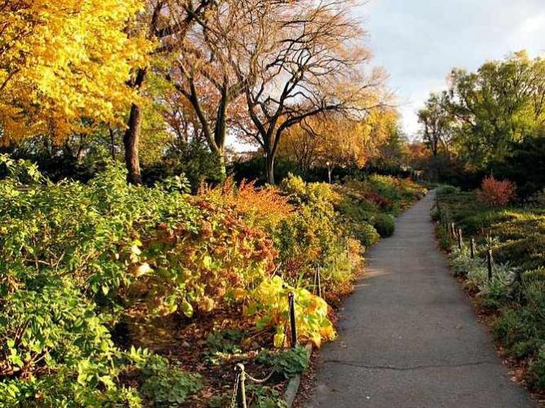 Heather Garden, Fort Tryon Park | ©  Kristine Paulus/Flickr/Flickr