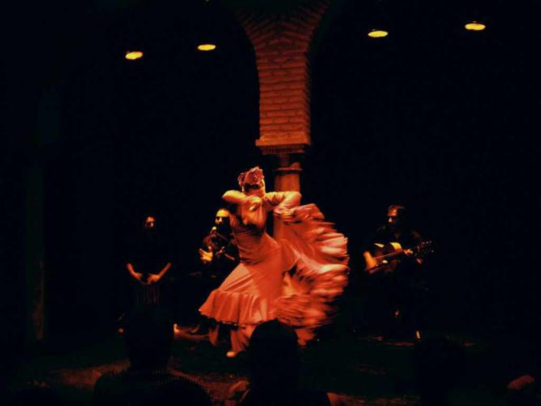 museum of flamenco show