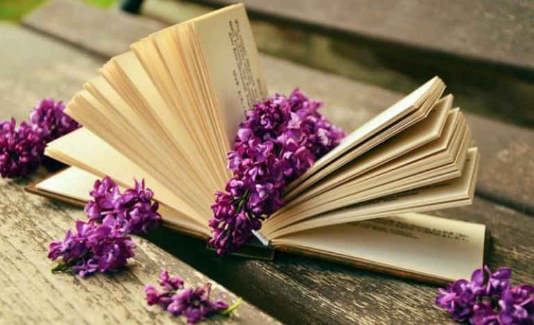 Outdoor literature | © condesign / Pixabay