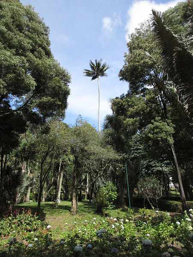 Parque La Independencia| ©Pedro Felipe/Wikimedia