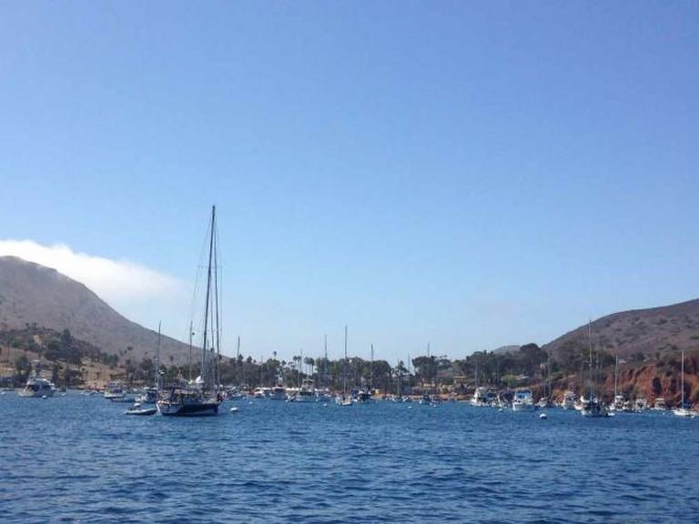 Two Harbors, Santa Catalina Island | © Hollywood Branded/Flickr