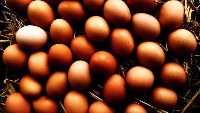 Eggs   © pixabay