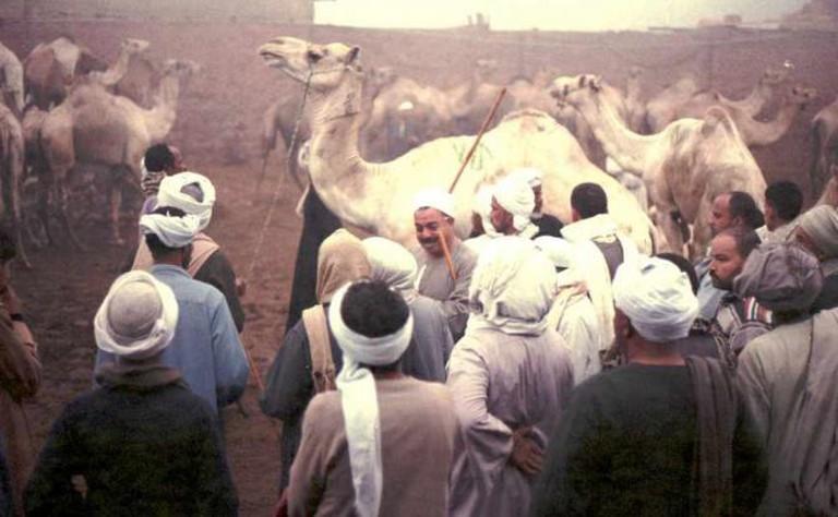 Birqash Camel Market | © Eoqha/Flickr