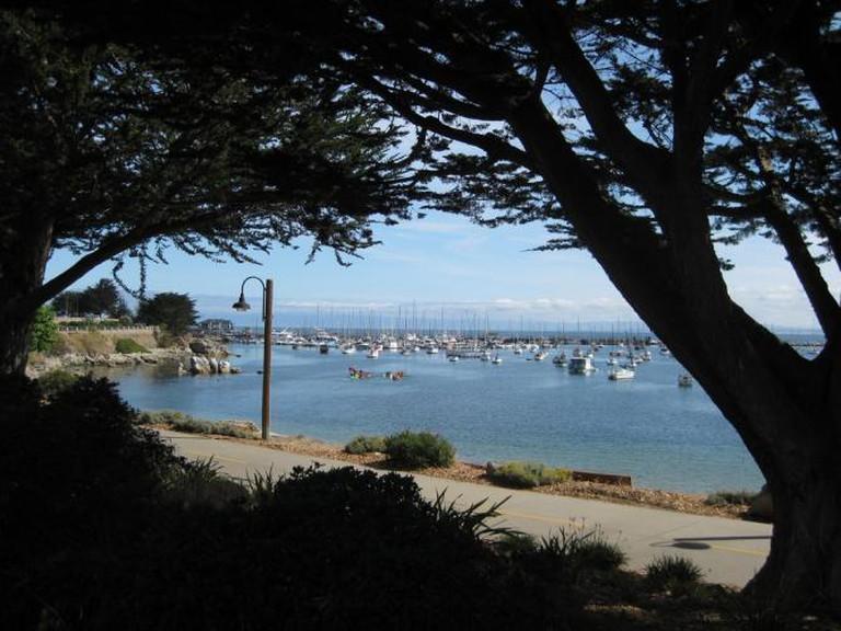 The trail at Monterey | © sarspri/Flickr