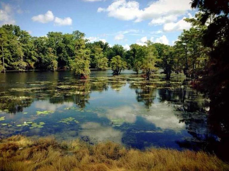 Black Bayou Lake   ©Cyril Fluck/Flickr