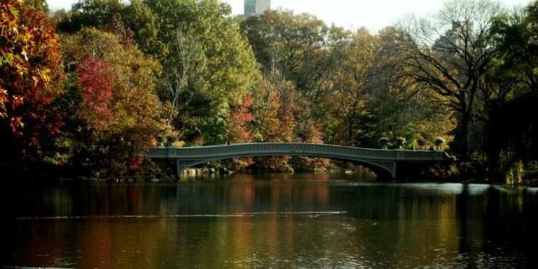 Central Park | © Matthew Buchanan/Flickr
