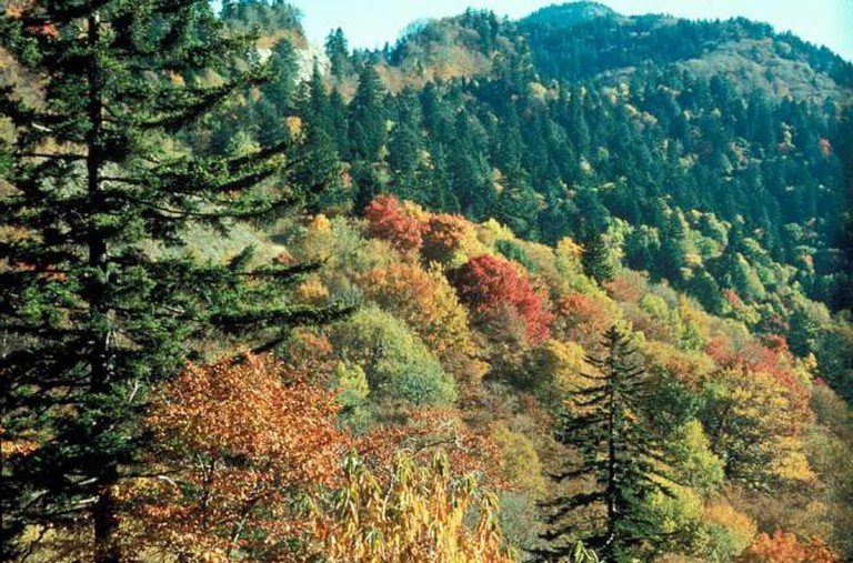 © Great Smoky Mountains National Park