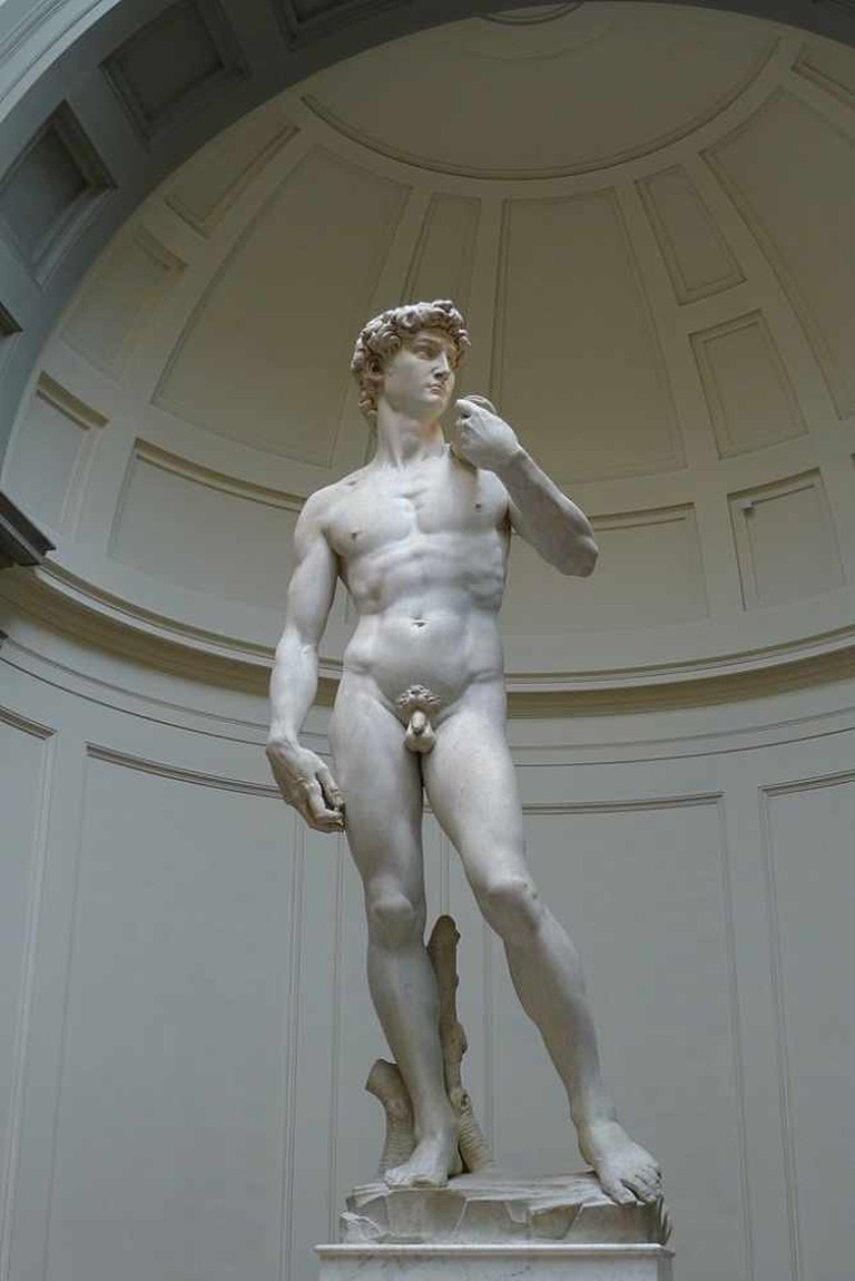 Michelangelo, David, 1501-04, Galleria dell'Accademia, Florence, Italy