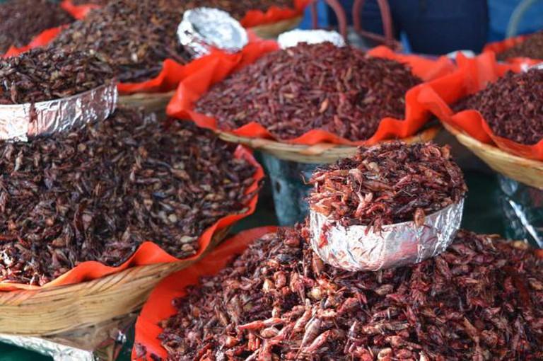 Chapulines at the market, a popular snack in Oaxaca I © Maya Sankey-Black, 2015
