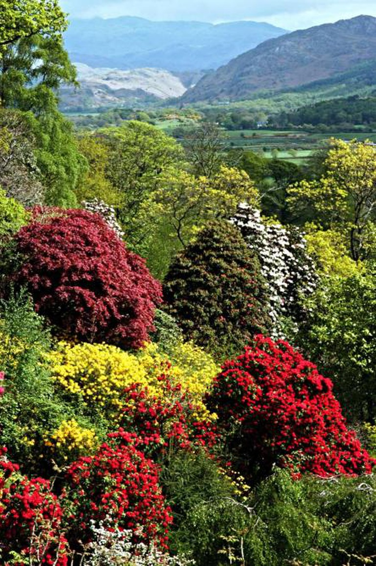 The Ghyll looking from Muncaster Castle to Scafell