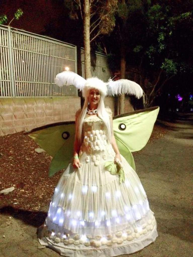 costume of lights   © Emily Boleware
