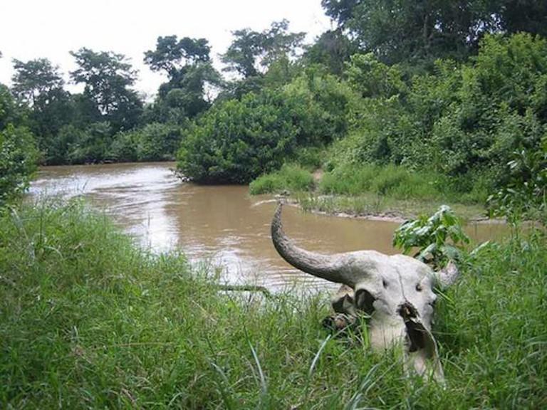 The Congo-Uganda border | © futureatlas.com/Flickr