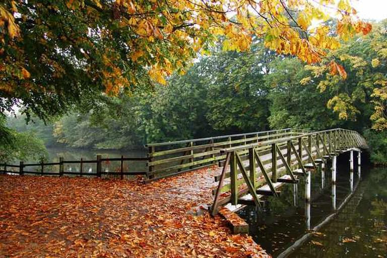 A Creative Commons image: White Bridge, Hartsholme Country Park, Lincoln    Attribution: John Bennett