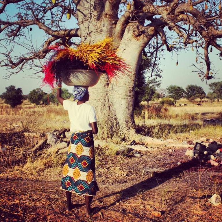 Aberima carrying dyed straw | © Akosua Afriyie-Kumi