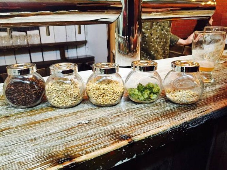 Beer ingredients | Courtesy Berlin Craft Beer Experience