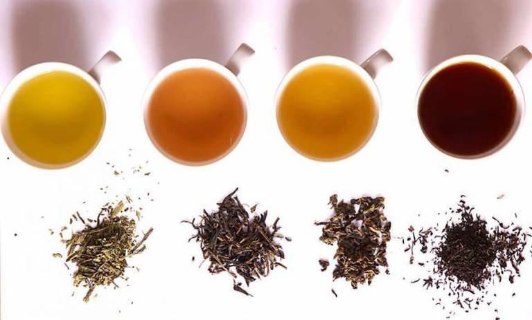 Tea in different grades of fermentation © Haneburger/WikiCommons