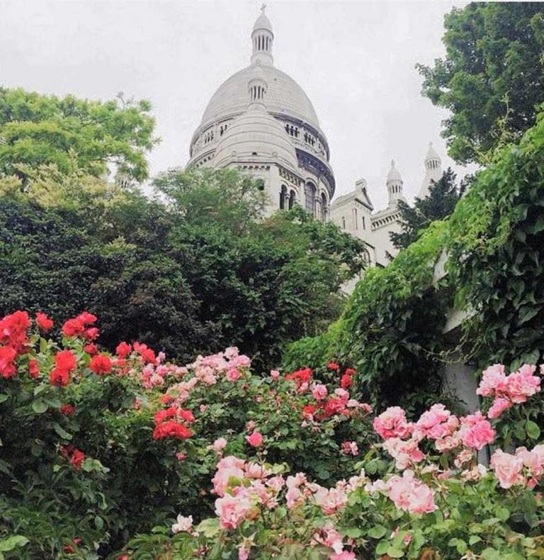 Sacré Coeur in Bloom | © Dagmara Chwalowska
