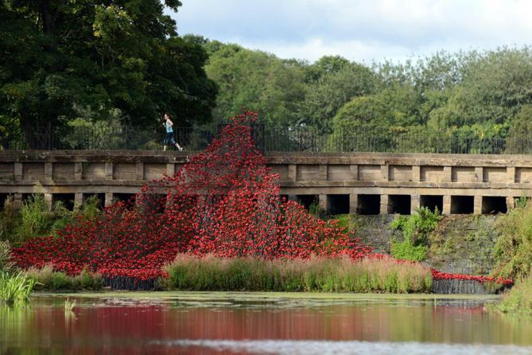 Wave by artist Paul Cummins and designer Tom Piper at YSP   Courtesy 14-18 NOW and YSP © Nigel Roddis/Getty Images
