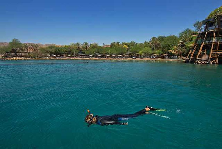 Snorkeling the reef of the Dolphin reef in Eilat I @Creative Commons