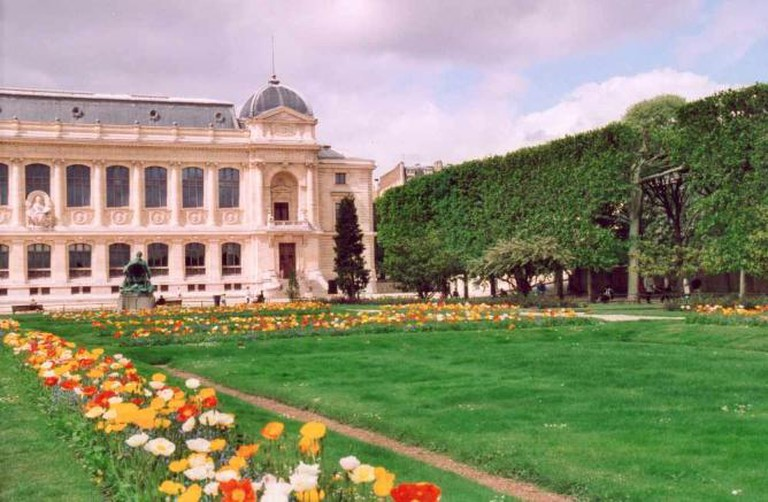 Le Jardin des plantes | © Patrick Giraud/WikiCommons