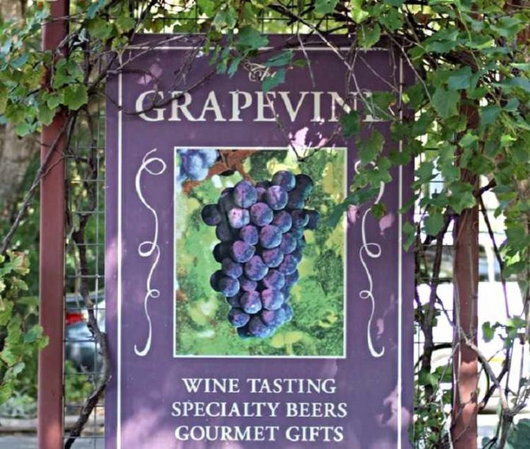 The Grapevine | © Beau B/Flickr