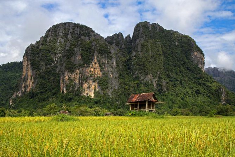 Hut in a paddy field in Laos I © Peter Nijenhuis/Flickr
