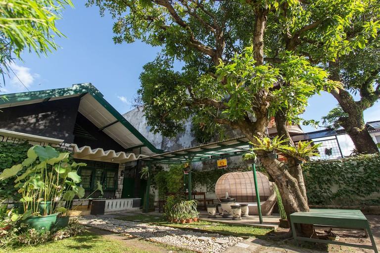 Mango Tree Dipudjo Homestay