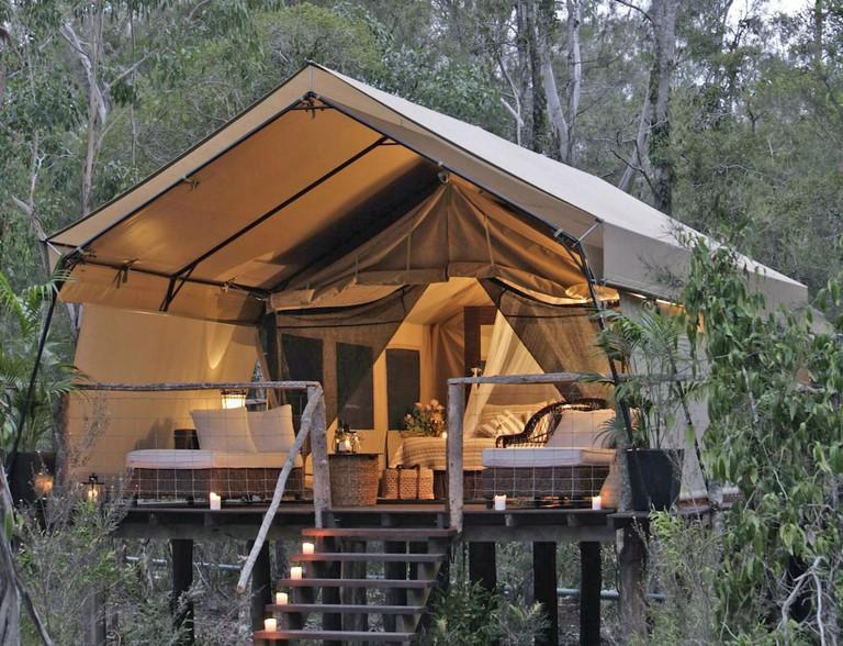 Paperbark Camp bedroom interior