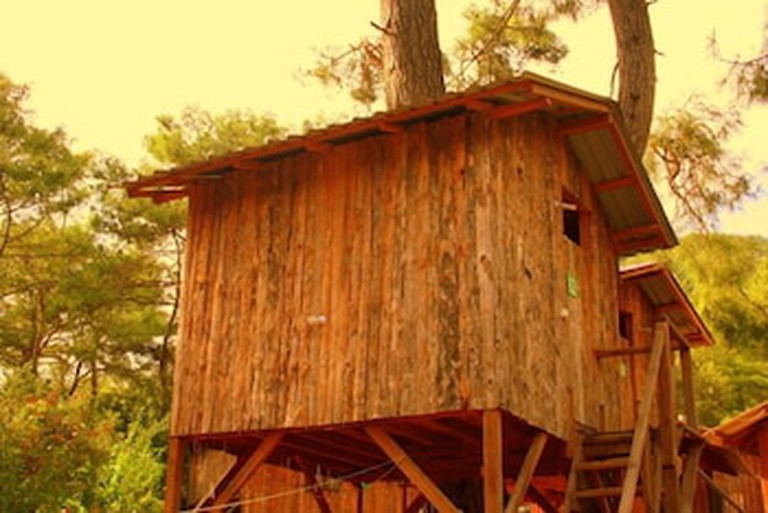 4d5114ff_y Saban Tree Houses