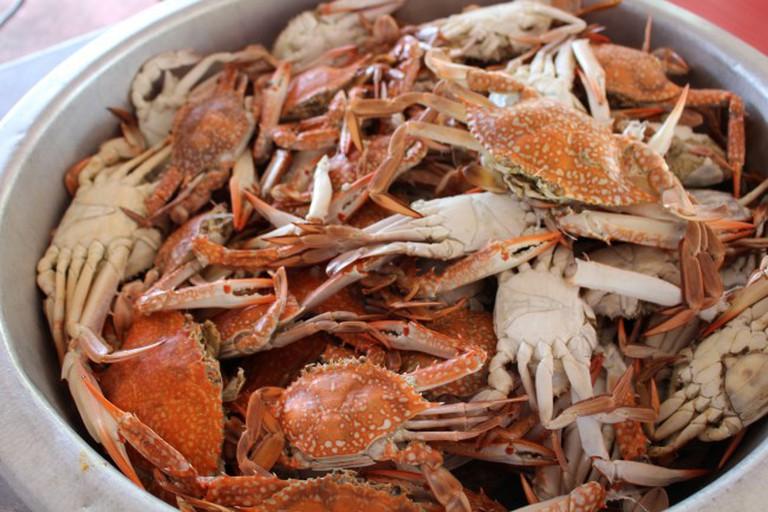 Freshly Caught Crab/ ©Pixabay