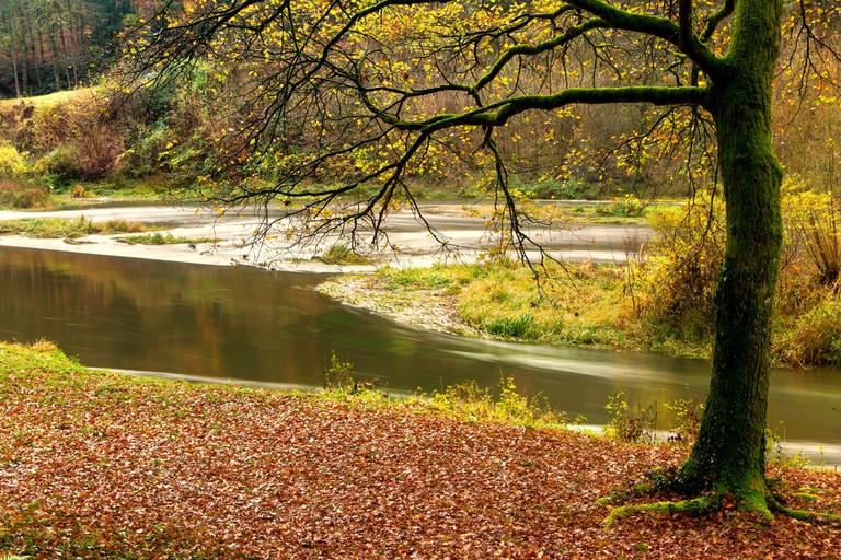 Autumn forests surrounding Torgny Belgium © Anneka / Shutterstock