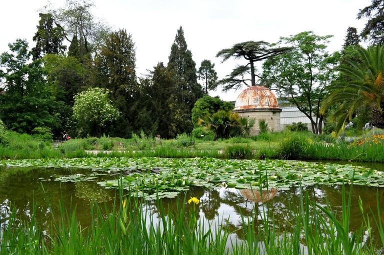 Jardin des Plantes, Montpellier © Mathilde Rozelot Ortuno