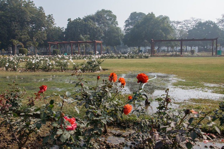 SCTP0092-MITTAL-INDIA-DELHI- NATIONAL​ ​ROSE​ ​GARDEN -13