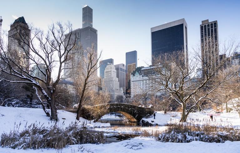 Central Park gapstow Bridge with city skyline in background