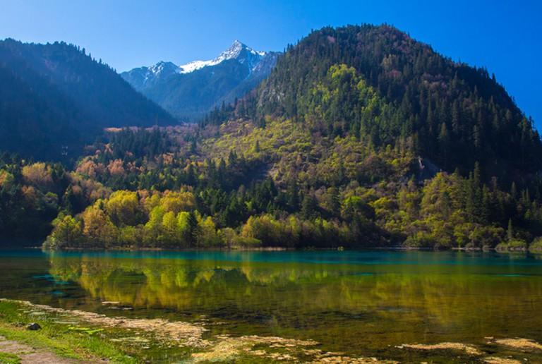 Five Flower Lake, Jiuzhaigou Valley | © Jean-Marie Hullot