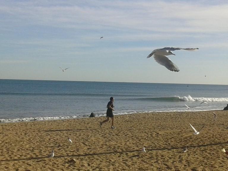 La Barceloneta: the swiftness and the fteedom   Courtesy of Elena Isaeva
