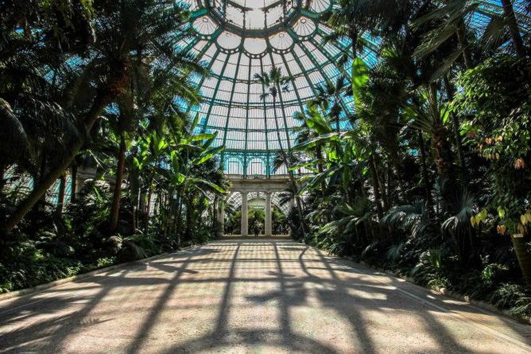 The Royal Greenhouses of Laeken |©Ioanna Sakellaraki