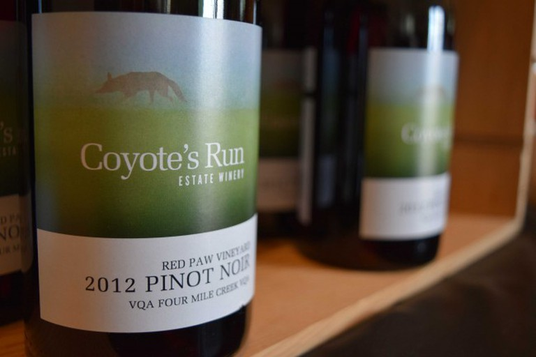 Coyote's Run Red Paw Pinot Noir | Courtesy of Coyote's Run Estate Winery