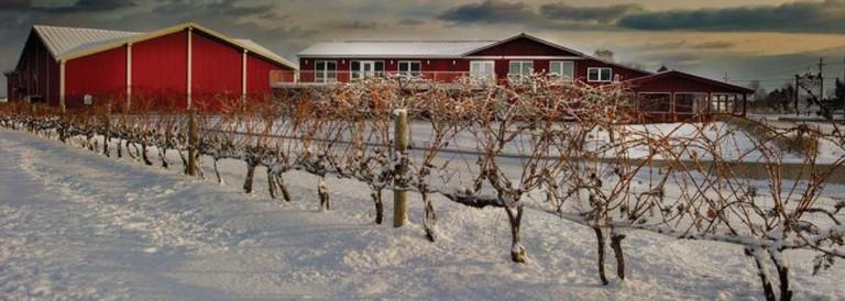 Winter at Pillitteri | Courtesy of Pillitteri Estates Winery