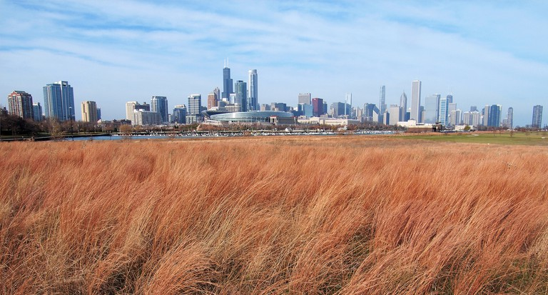 View from Northerly Island