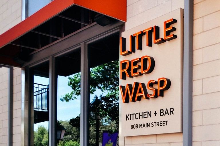 Little Red Wasp   © Tanya Wardell