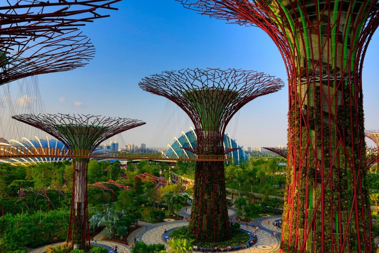 OCBC Skyway, Supertree Grove, Singapore | Courtesy Gardens by the Bay