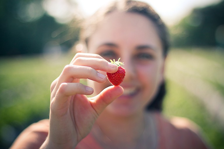 Strawberry Picking   © Basheer Tome/Flickr