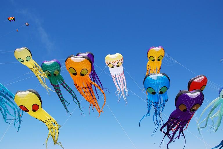 Octopi kites at the Berkeley Kite Festival   © May Wong/Flickr