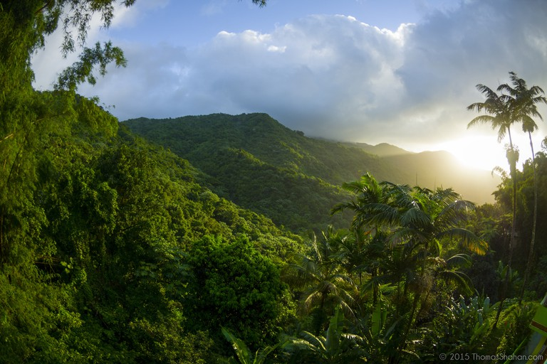 El Yunque National Forest, Puerto Rico | © Thomas Shahan/Flickr